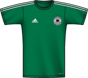 adidas DFB Away Replica Tee