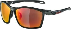 Alpina Twist Five CM+ Sportbrille