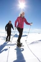 Langlauf-Skistöcke, die Arme laufen mit