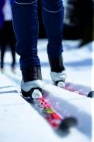 Langlaufskier, gesunde Bewegung auf Brettern
