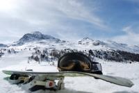 Skibrillen, Durchblick für ein ungetrübtes Skivergnügen