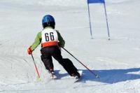 Skistöcke, ein unverzichtbarer Begleiter auf der Piste